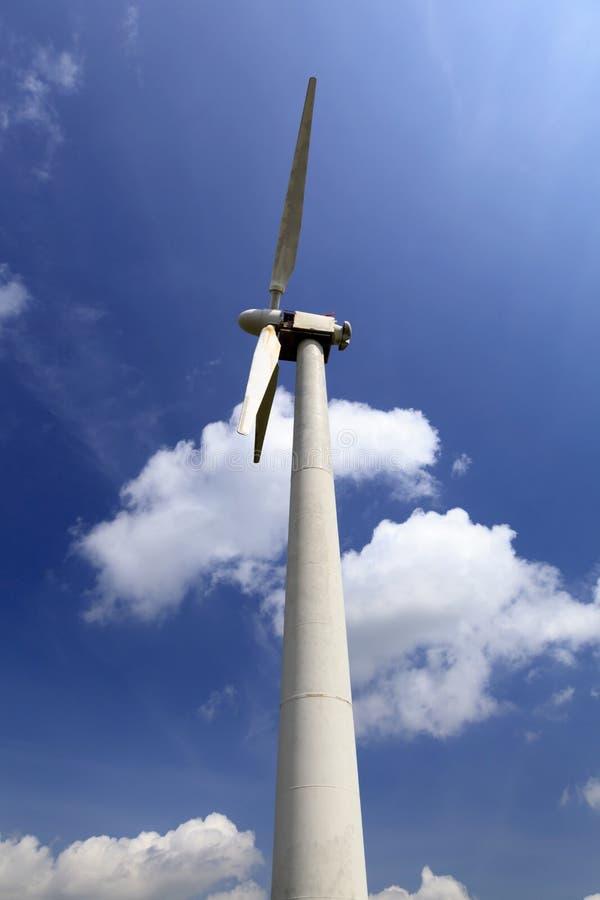 Champ d'éoliennes de Penrhyddlan et de LLidiartywaun photographie stock libre de droits
