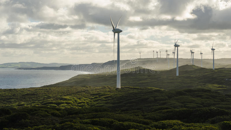 Champ d'éoliennes du ` s d'Albany photographie stock libre de droits