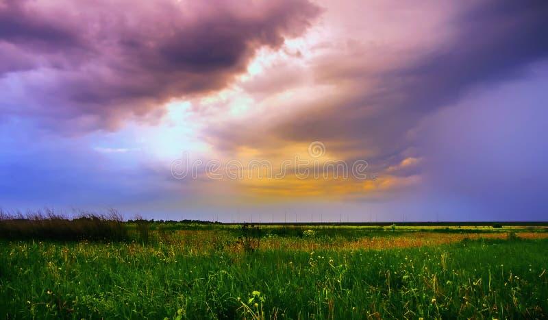 Champ d'été sous le ciel dramatique photos libres de droits