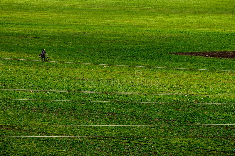 Champ d'herbe verte avec un cycliste photo libre de droits