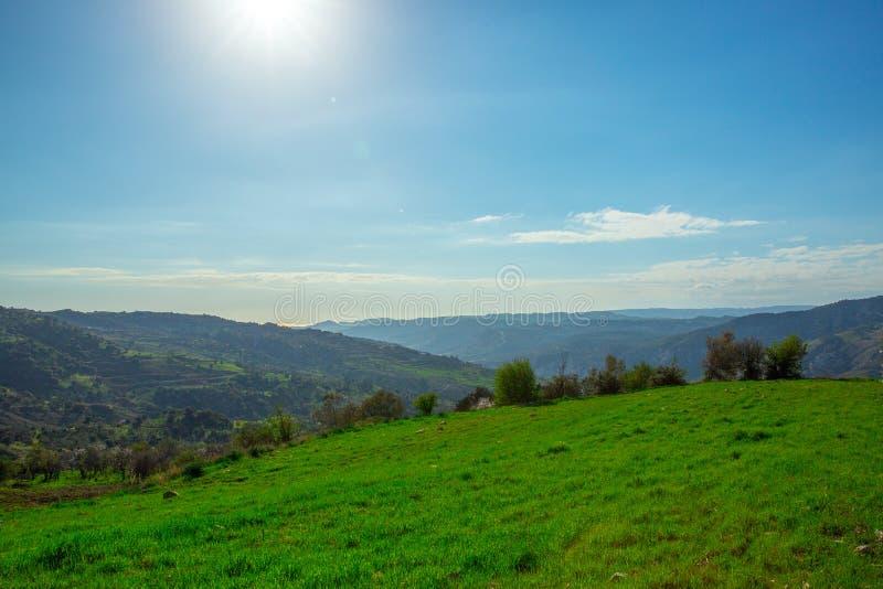 Champ d'herbe verte sur de petites collines et ciel bleu avec des nuages photographie stock libre de droits