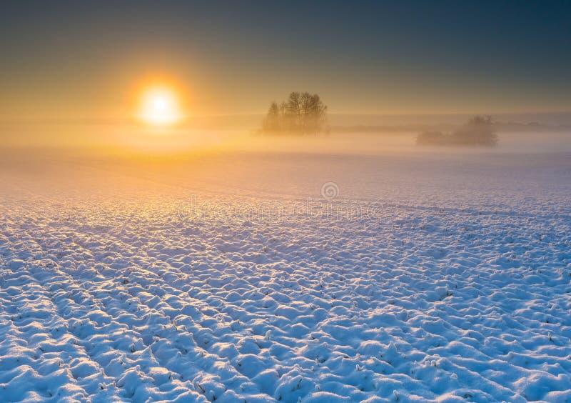 Champ d'hiver au lever de soleil image stock