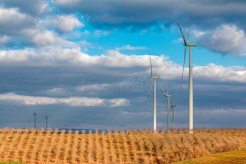 Champ de blé avec des turbines de vent image stock