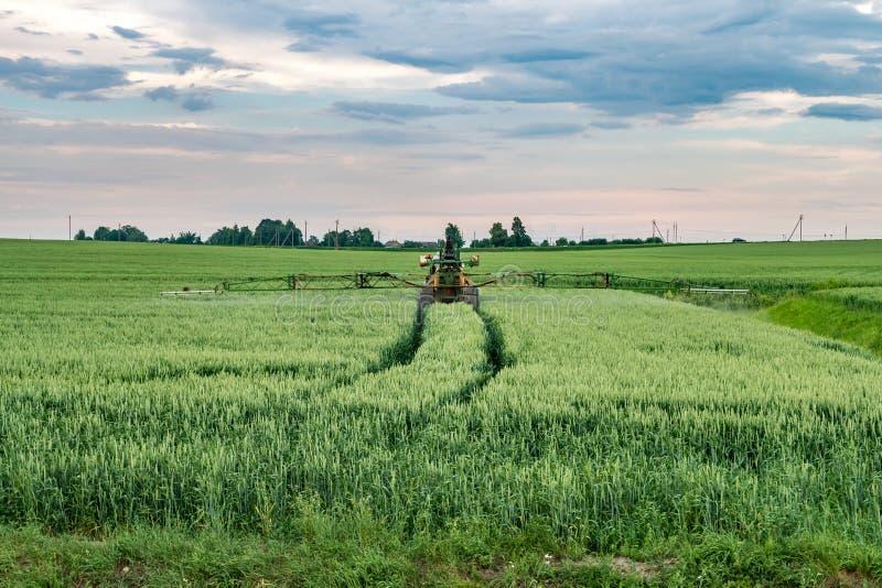 Champ de blé de pulvérisation de producteur avec le pulvérisateur de tracteur au printemps photos stock