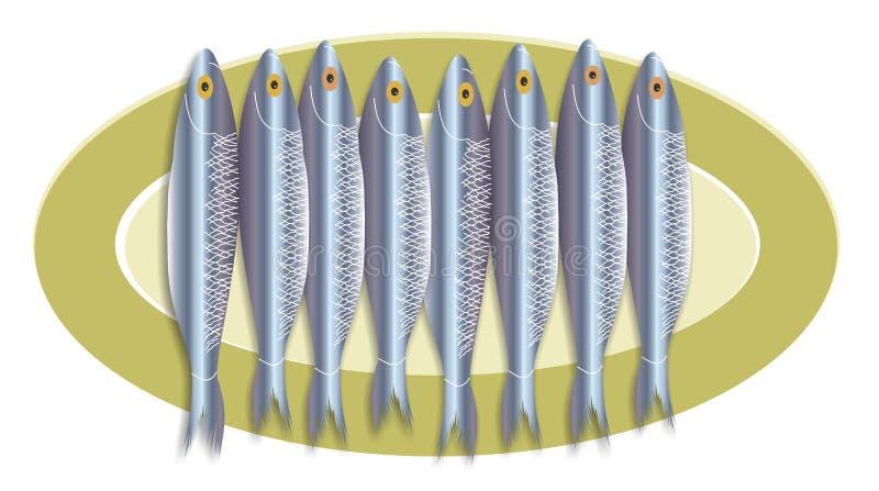 Champ de cablage à couches multiples de sardine illustration libre de droits