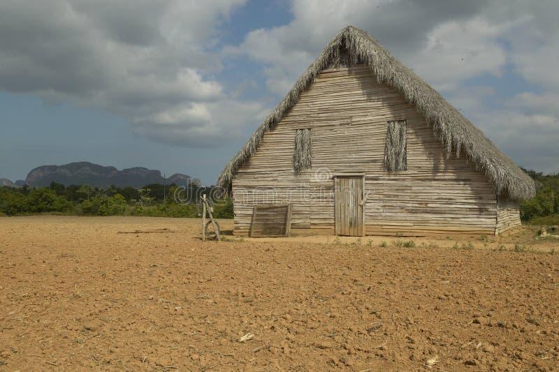 Champ de ferme avec la grange dans les bières anglaises de ½ de ¿ de Valle de Viï, au Cuba central photo libre de droits