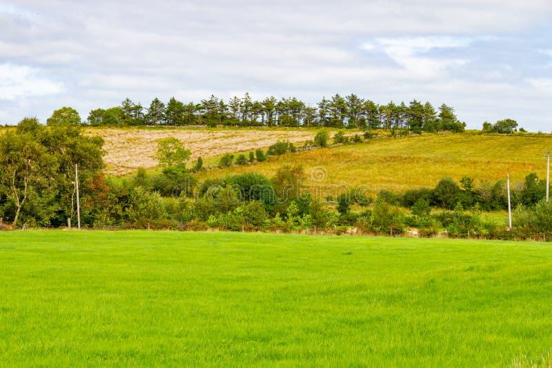 Champ de ferme dans l'itinéraire de Greenway de Castlebar à Westport photographie stock