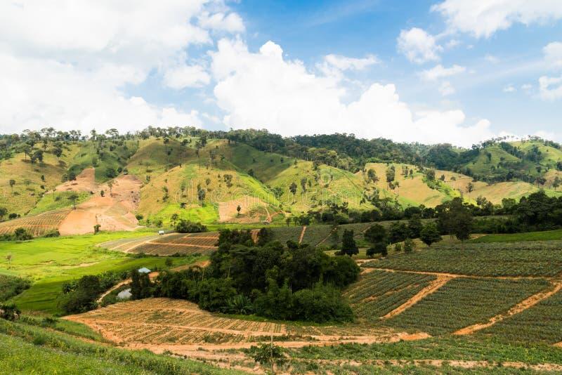 champ de ferme sous des nuages photographie stock