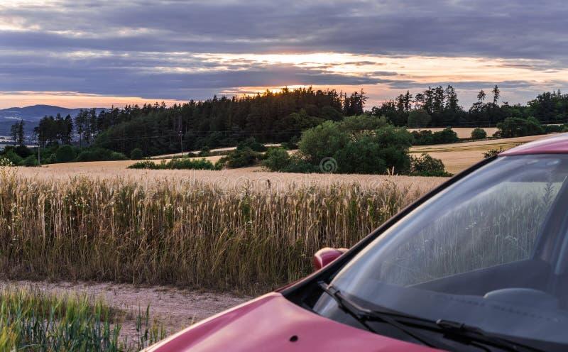 Champ de grain au coucher du soleil et à la voiture photos stock
