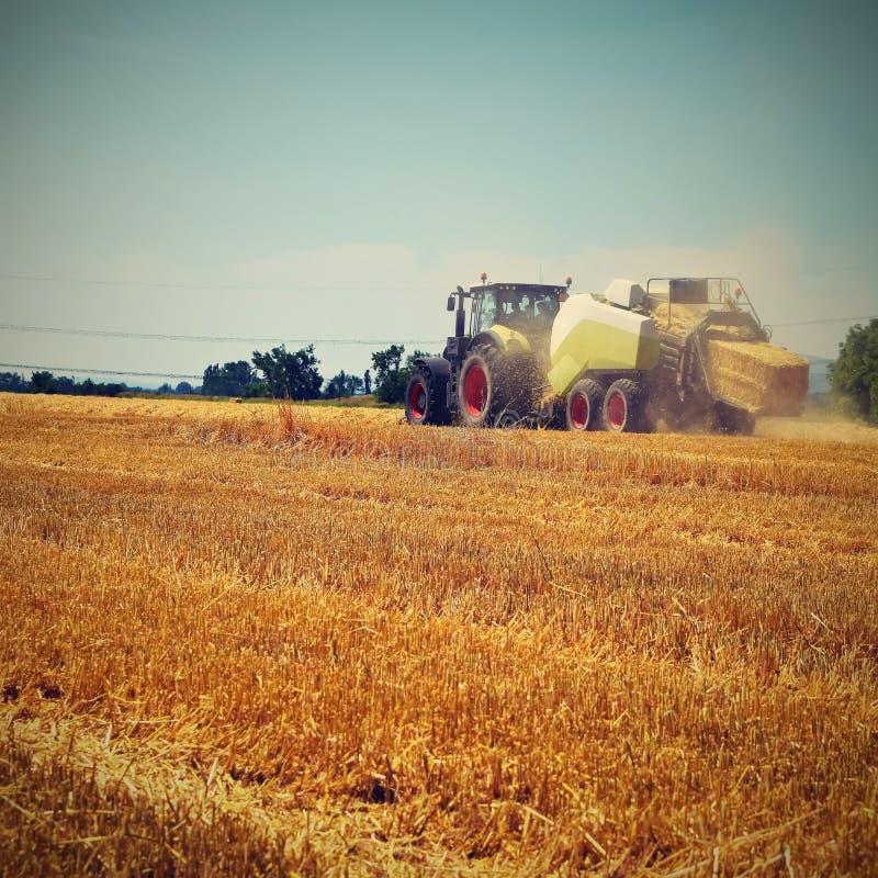 Agriculture r&d statistics