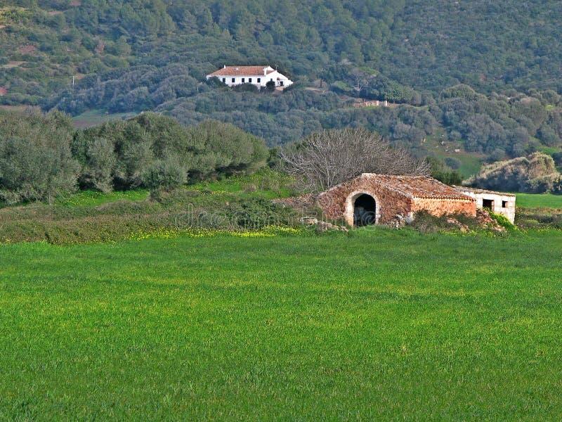 Champ de Menorquin photo libre de droits