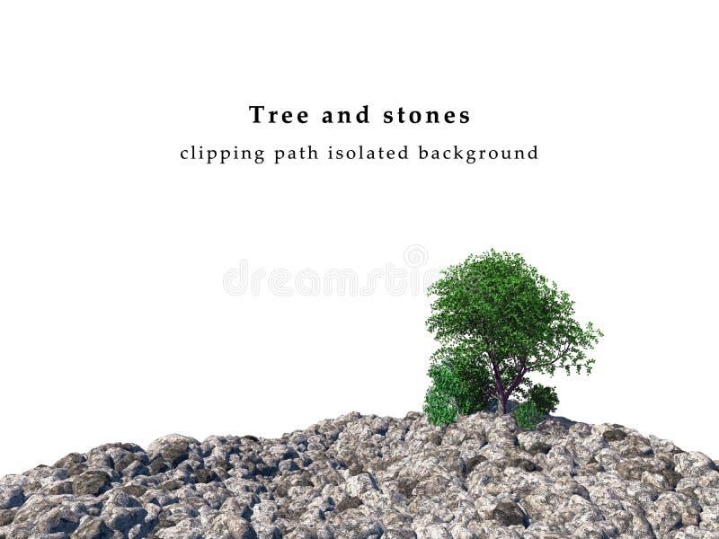 Champ de pierres et arbres verts images libres de droits