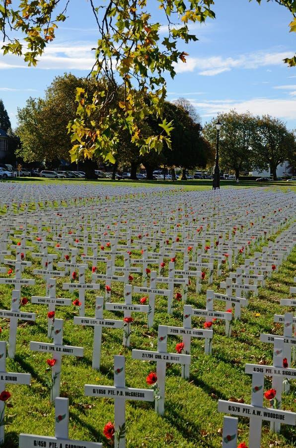 Champ des croix pour Anzac Day photo libre de droits