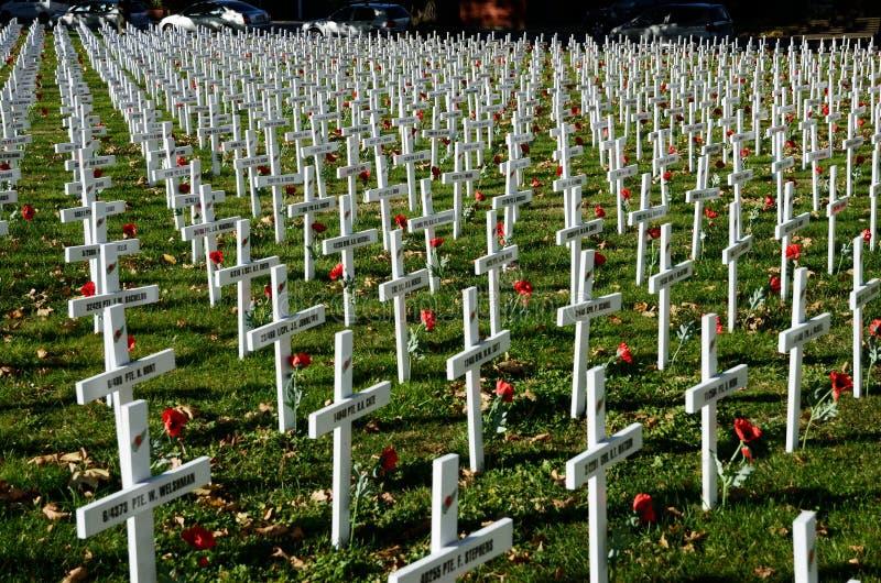 Champ des croix pour Anzac Day photos stock