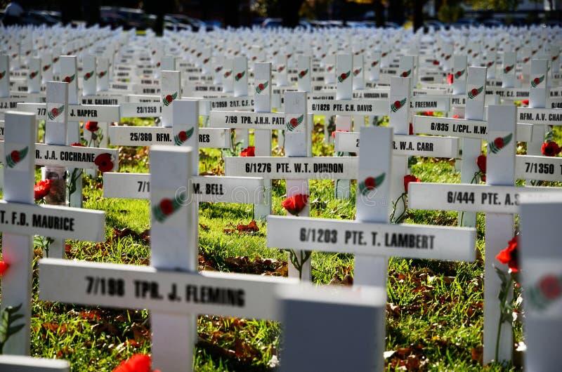 Champ des croix pour Anzac Day image stock