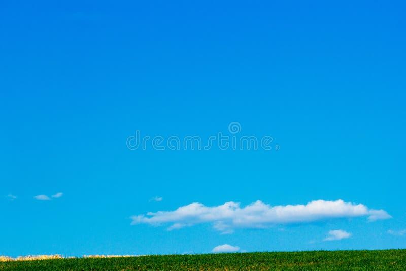 Champ des cultures de terres cultivables et du beau ciel bleu ci-dessus photos stock
