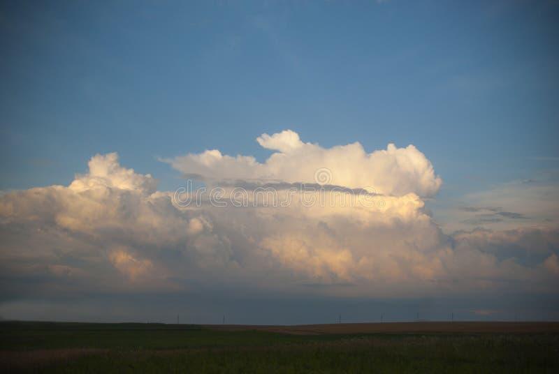 Champ des cultures grandissantes vertes avec un beau ciel égalisant ci-dessus photo libre de droits