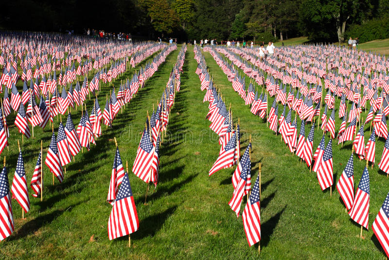 Champ des drapeaux américains pendant le Jour de la Déclaration d'Indépendance des USA photo stock