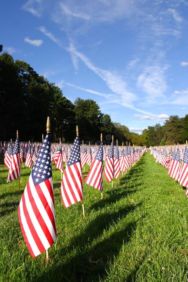 Champ des drapeaux américains pendant le Jour de la Déclaration d'Indépendance des USA photographie stock