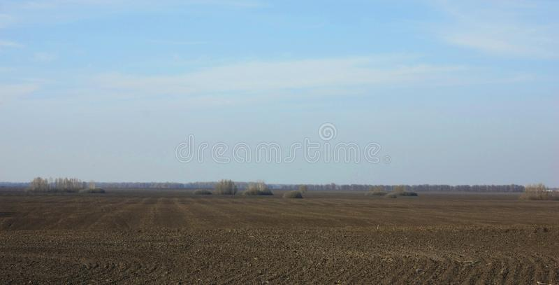 Champ labouré au printemps préparé pour l'ensemencement Ciel bleu et forêt photos stock