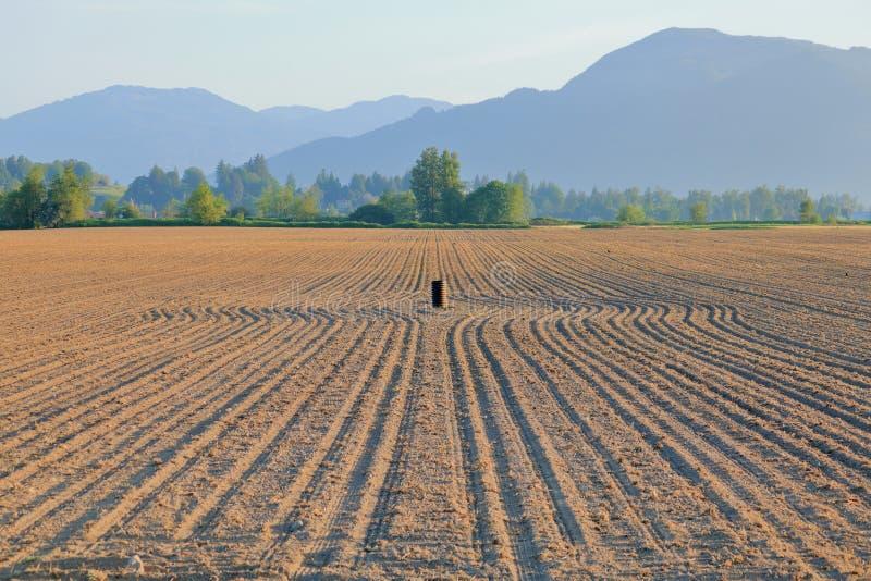 Champ labouré et petite irrigation bien image stock