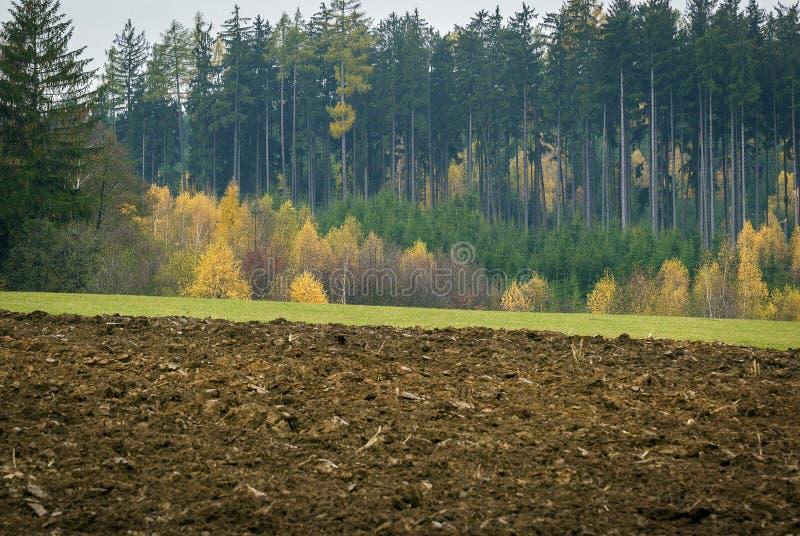 Champ roussi, pré vert, et forêt multicolore dans un petit village photographie stock libre de droits
