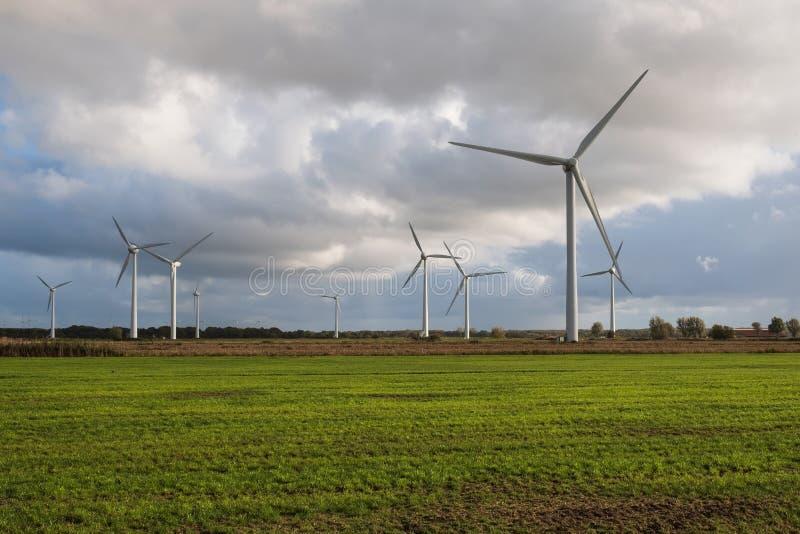 Champ vert avec éoliennes générant de l'électricité photographie stock libre de droits