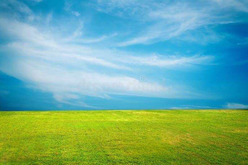 Champ vert et ciel bleu avec les nuages légers photo stock