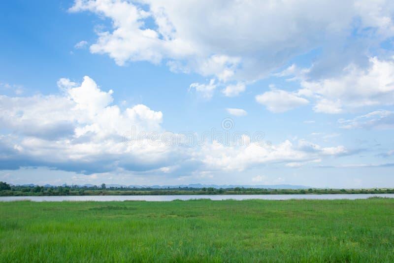 Champ vert, rivière et ciel bleu avec le backgrund léger de nuages photos stock