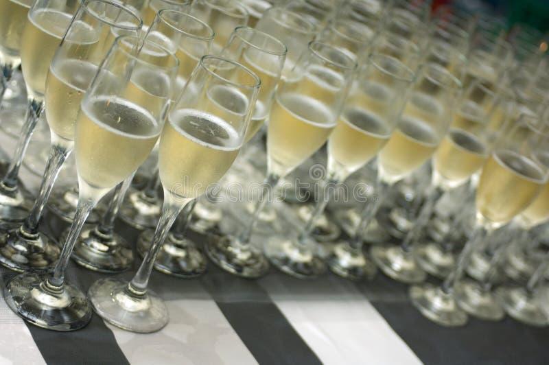champagne royaltyfria bilder
