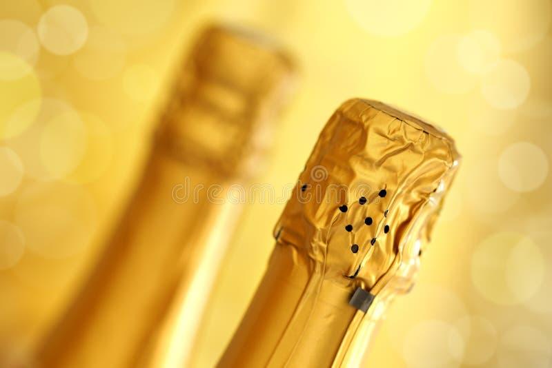Champagne royaltyfri foto