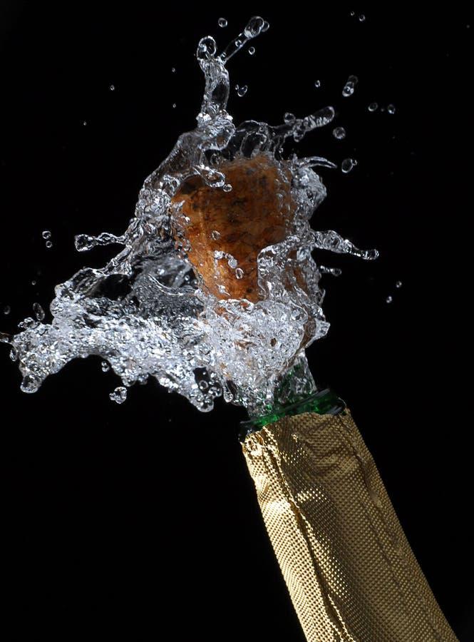 Download Champagne fotografia stock. Immagine di spruzzata, spruzzatura - 7309974