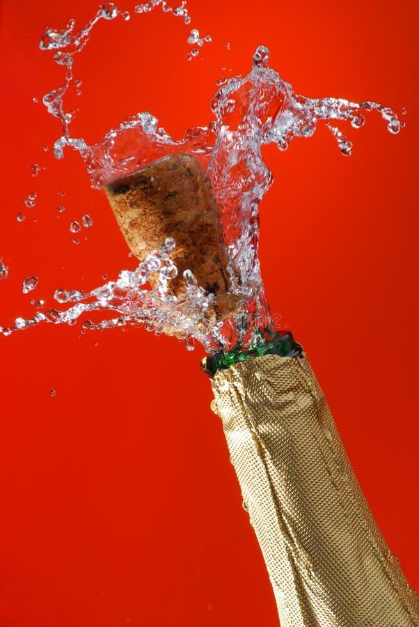 Download Champagne fotografia stock. Immagine di nuovo, bevanda - 7310064