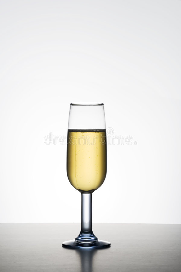 Champagne. Single champagne glass on graduated background with copy space royalty free stock image