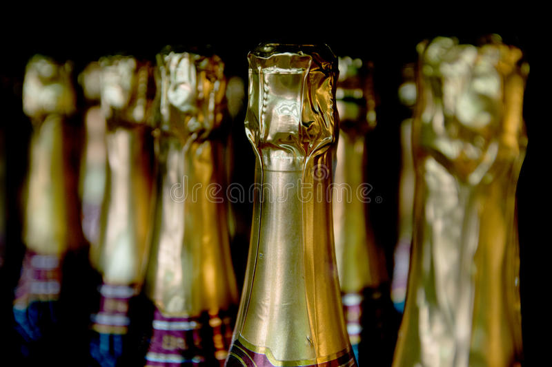 Champagne bottles. In the wine store stock photos