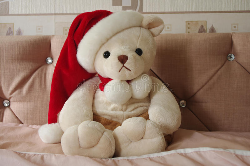 Champagne Christmas Teddy images stock