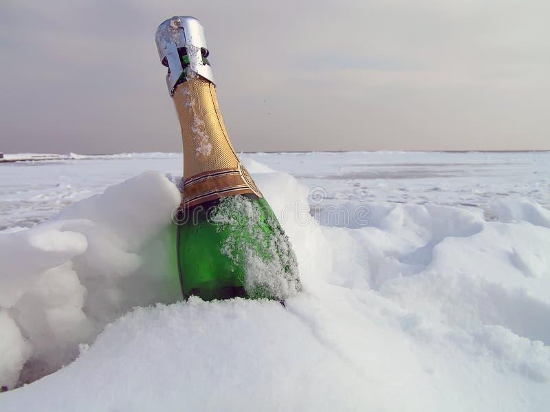 Champagne in einem Schnee lizenzfreie stockbilder