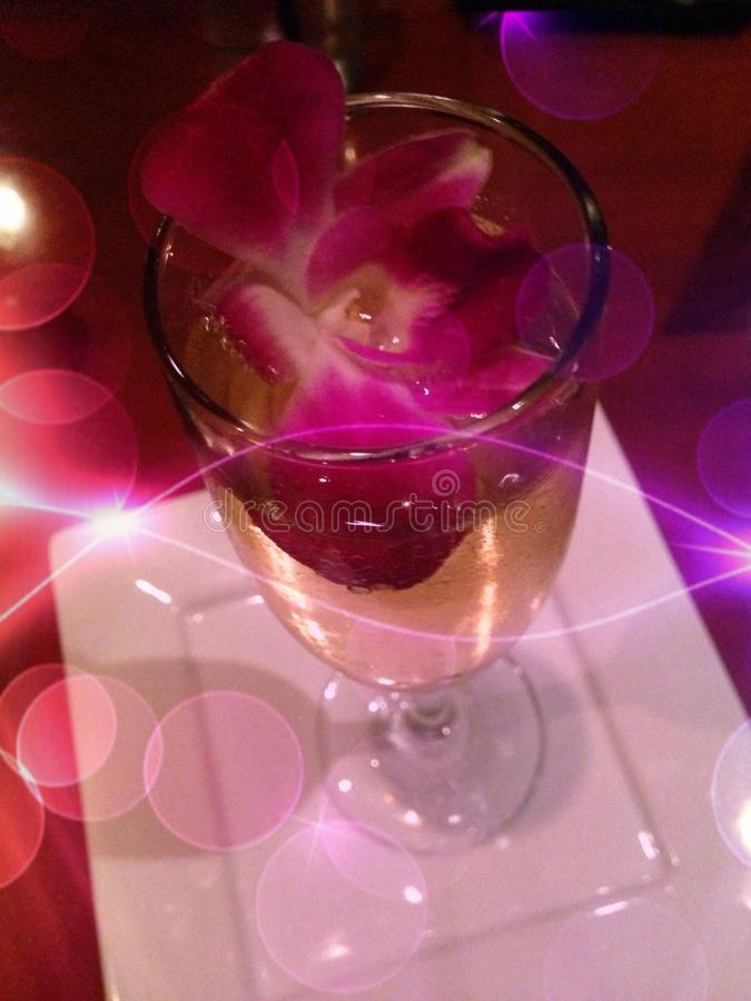 Champagne fiorita fotografia stock libera da diritti