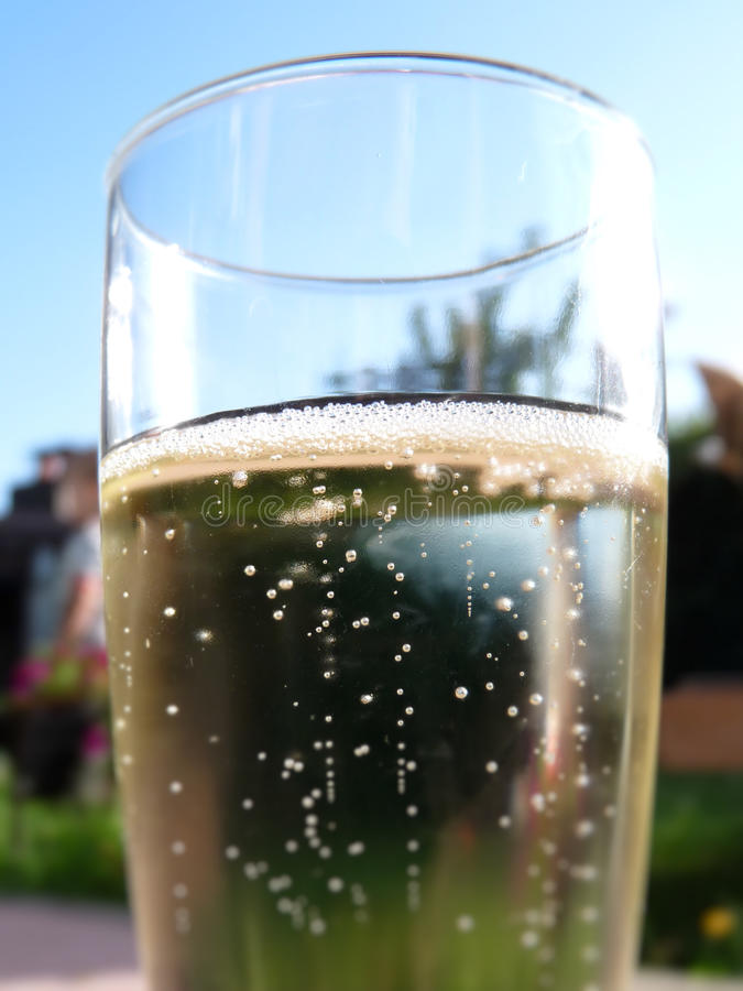 Download Champagne Glass Royalty Free Stock Images - Image: 10199109