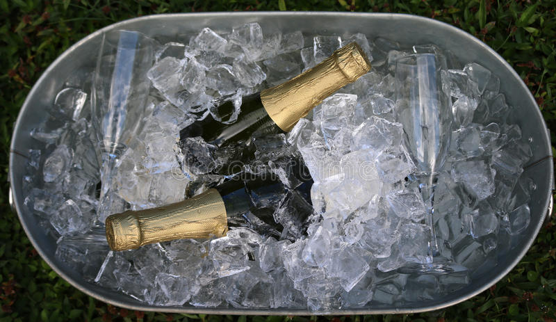 Champagne and glasses in ice royalty free stock photos