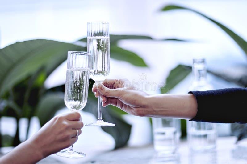 Champagne i härligt exponeringsglas Möte i en stadsrestaurang eller kafé Houseplants near fönstret, dagsljus fotografering för bildbyråer