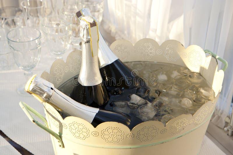 Champagne i hink arkivfoton