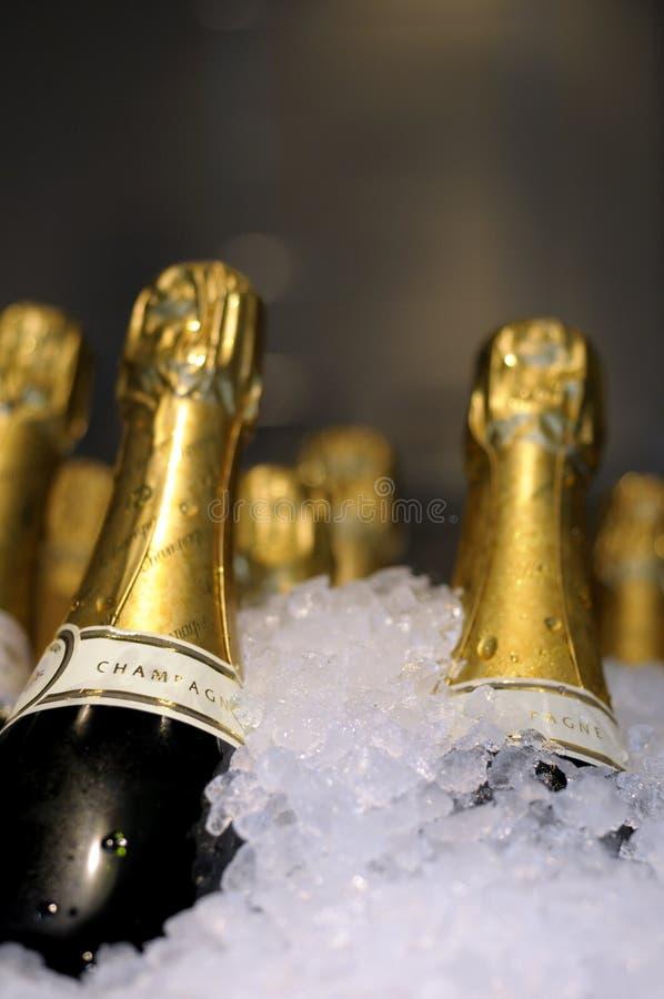 Champagne no gelo. imagem de stock royalty free