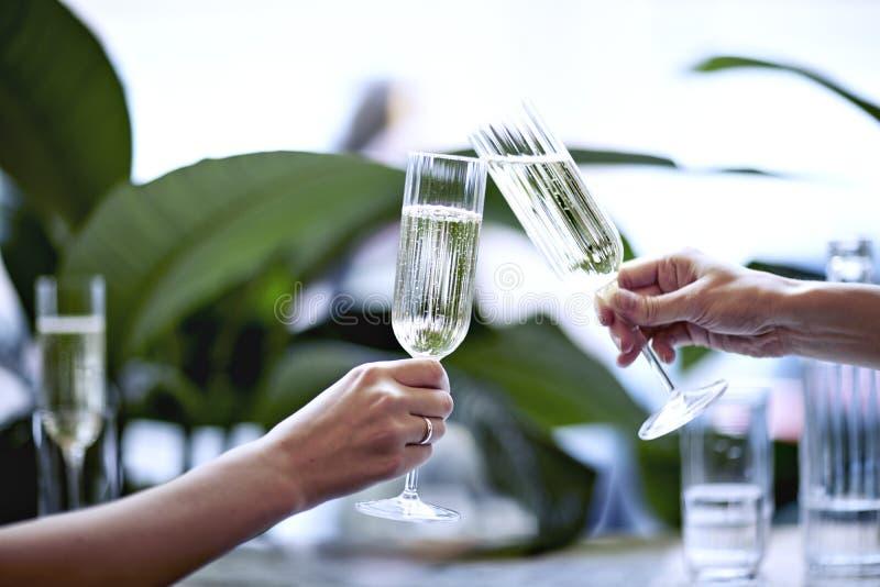 Champagne no vidro bonito Encontro em um restaurante ou em um café da cidade Os Houseplants aproximam a janela, luz do dia fotos de stock royalty free