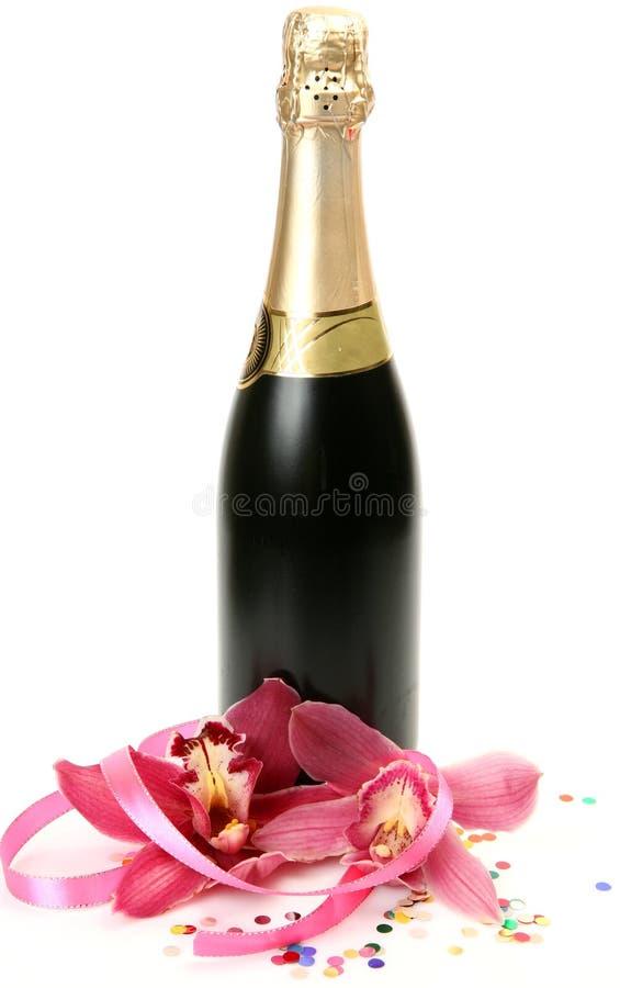 Champagne- och rosa färgorkidér royaltyfri foto