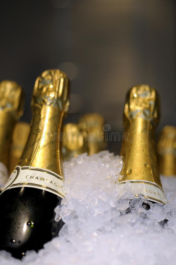 Free Champagne On Ice. Royalty Free Stock Image - 10359756