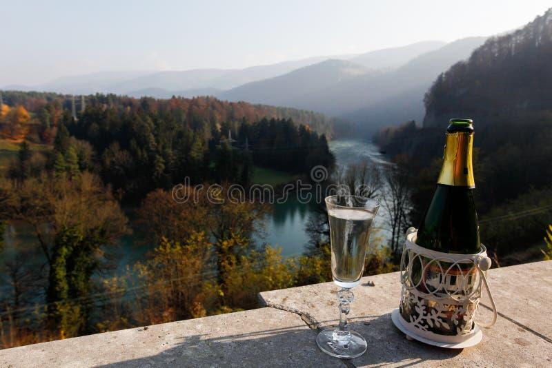Champagne op vakantie royalty-vrije stock foto's