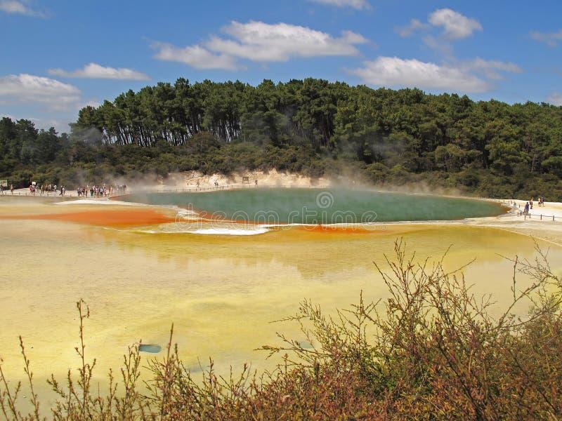 Champagne Pool - Rotorua royaltyfria bilder