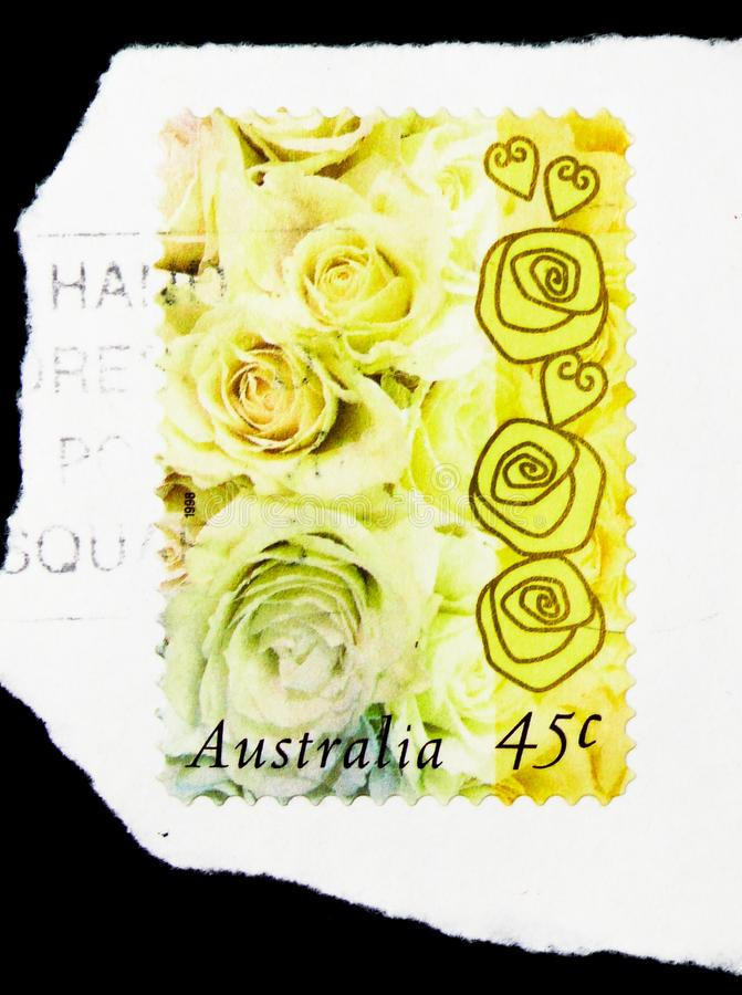 Champagne Rose, serie de timbres de salutations, vers 1998 photos libres de droits