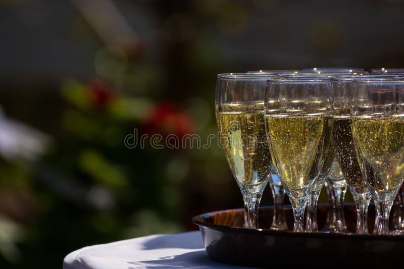 Champagne Sparkling Cider Alcohol Drink Tray Outdoors Reception. Champagne Sparkling Cider Alcohol Drink Tray Outdoors royalty free stock photos